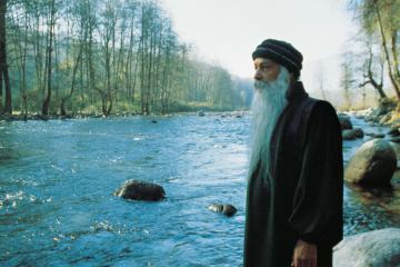 Cos'è la Meditazione ?