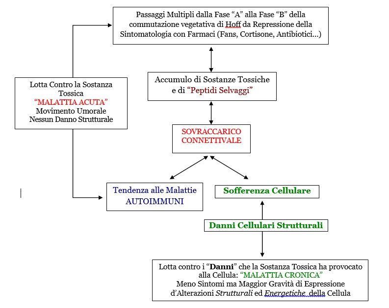 Omotossicologia Figura 5