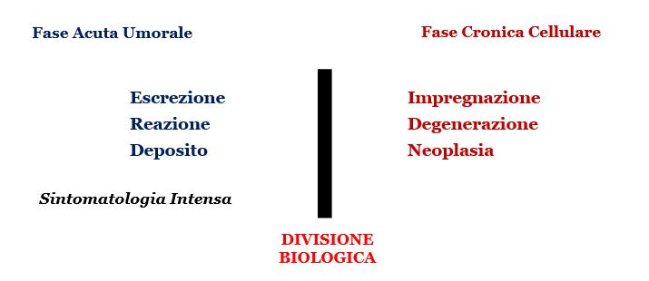 Omotossicologia Figura 7