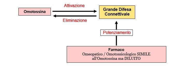 Omotossicologia Figura 8