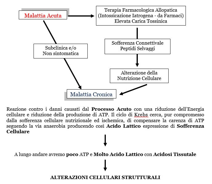Omotossicologia Figura 9