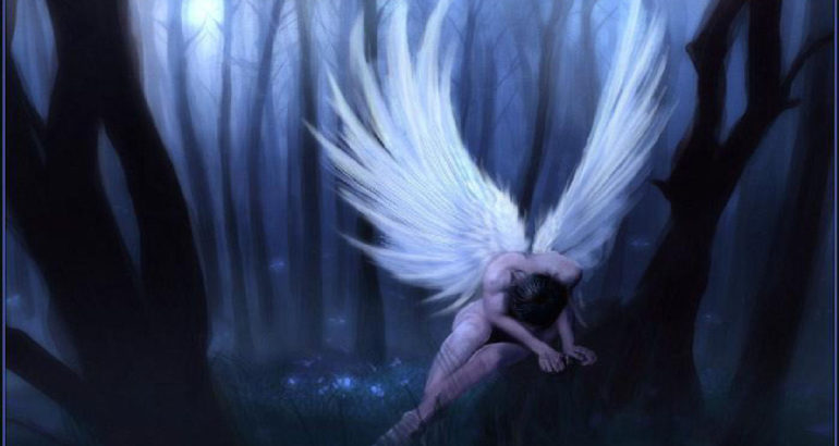 Angels angels and fairies 30923830 1280 815
