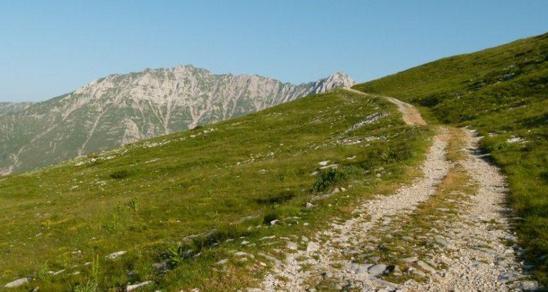 Sentiero dei Fiori P1110543 e1435153816342