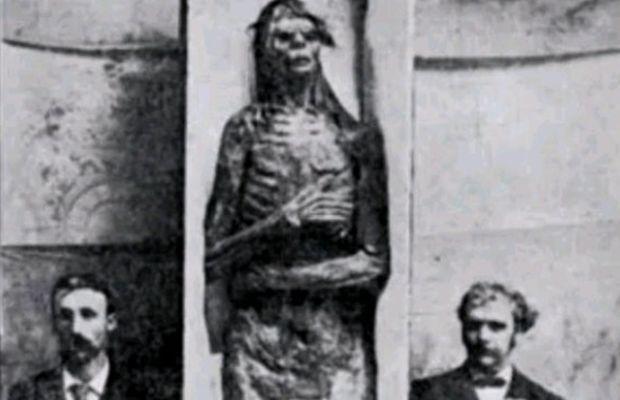 mummia gigante Smithsonian