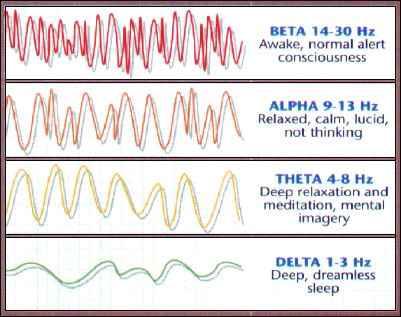 02812_brainwaves1