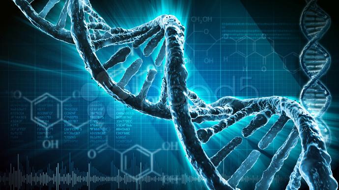 potremmo essere un esperimento genetico degli