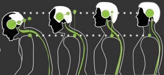 Postura della testa e ansia si influenzano a vicenda-4
