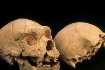 Un Dna di 400 mila anni manda in Tilt gli Antropologi