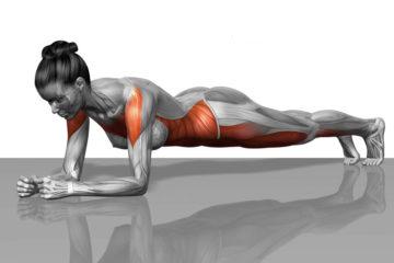 Un Importante Esercizio per prevenire gli Infortuni: il Plank