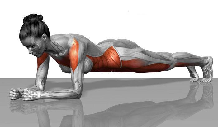 Un importante esercizio per prevenire gli infortuni il plank1