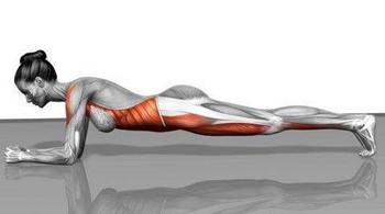 Un importante esercizio per prevenire gli infortuni il plank2