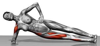 Un importante esercizio per prevenire gli infortuni il plank3
