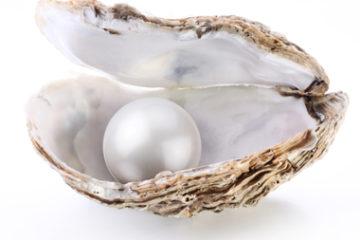 L'Ostrica e la Perla