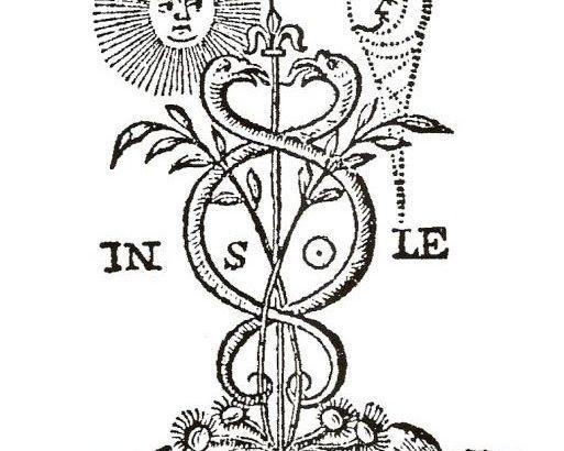 Alchimia Verde o la Spagiria