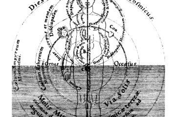 Corrispondenze Erbe/Organi – Le Influenze Dinamiche della Natura [R]