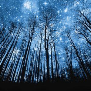 coscienza-cosmica-campo-quantico-fisica-quantistica-crescita-spirituale-1024x576