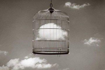 Liberazione e Salvezza: due Parole Diverse per Cose Differenti