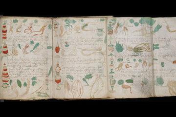 Il Manoscritto di Voynich: Svelati i Primi Segreti