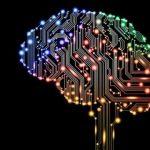 cervello cyborg