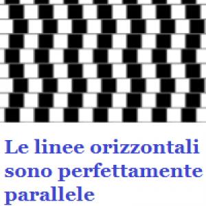 percezione linee
