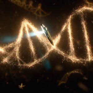 bio fotoni 1