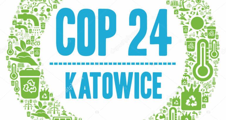 cop24 7