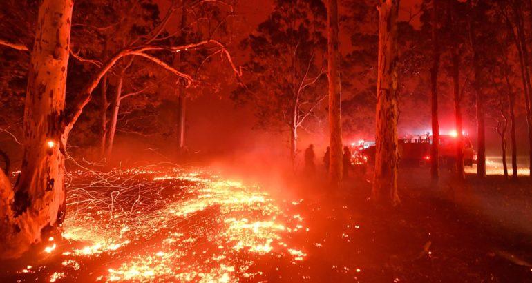 incendi australia 31