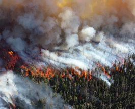 Artico, la Verità sugli Incendi