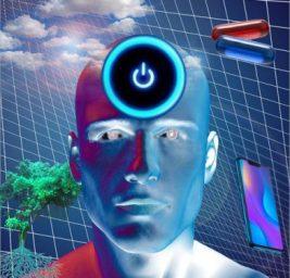 La Vita ai Tempi del Risveglio