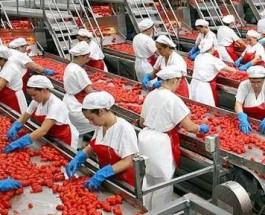 Ciò che Avviene nelle Grandi Industrie Alimentari [R]