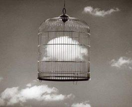 Liberazione e Salvezza: due Parole Diverse per Cose Differenti [R]