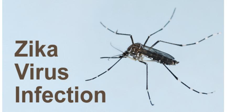Zika Virus – Quello che non vi stanno dicendo