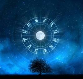Allegoria dei Dodici Segni Zodiacali – La Missione dei Dodici Eroi [R]