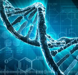 Cellule Riprogrammate per uccidere il Tumore, Bimbo di 4 anni curato per  una Leucemia