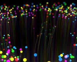 I bio-fotoni e la comunicazione elettromagnetica inter-cellulare