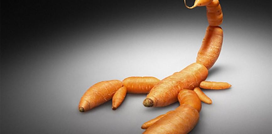 Essere Vegetariani o Vegani Fa Male alla Salute
