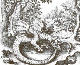 Il Simbolismo Sacro del Drago