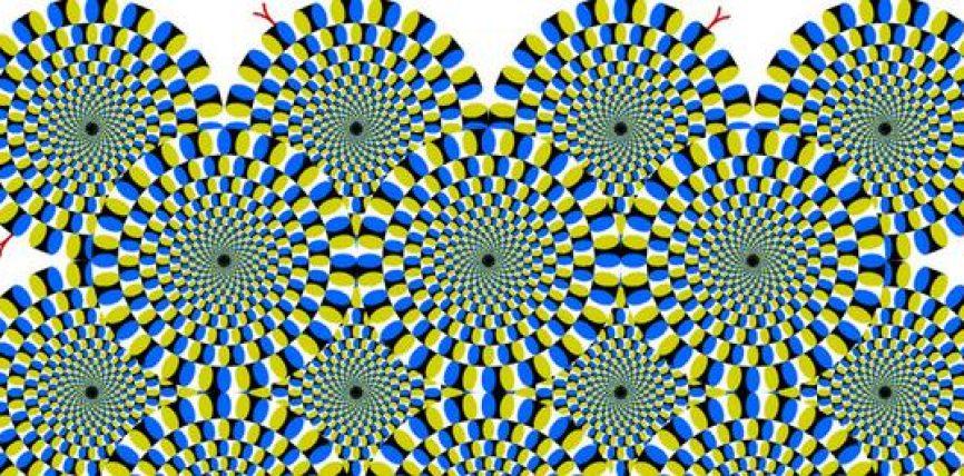 L'Illusoria Percezione della Realtà