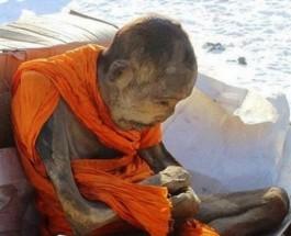 Quando devo Meditare e con che Frequenza ?