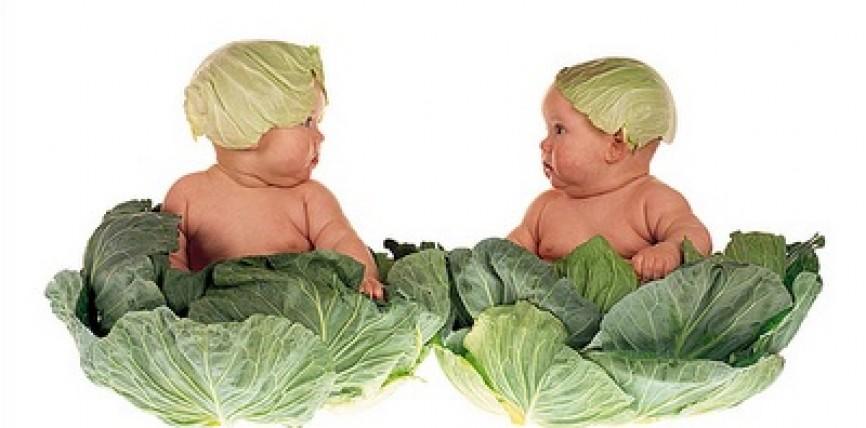 "Bambini ""Vegan"""