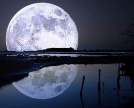 Il Nutrimento della Luna (La Luna è un Gigantesco Essere Vivente)