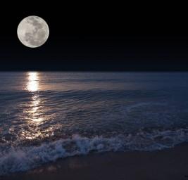 Il Principio Primario Lunare