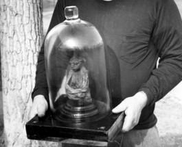 Il Mistero della Mummia delle San Pedro Mountains