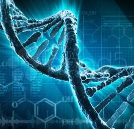 Potremmo essere un Esperimento Genetico degli Extraterrestri
