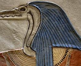 Thoth il Maestro Asceso [R]